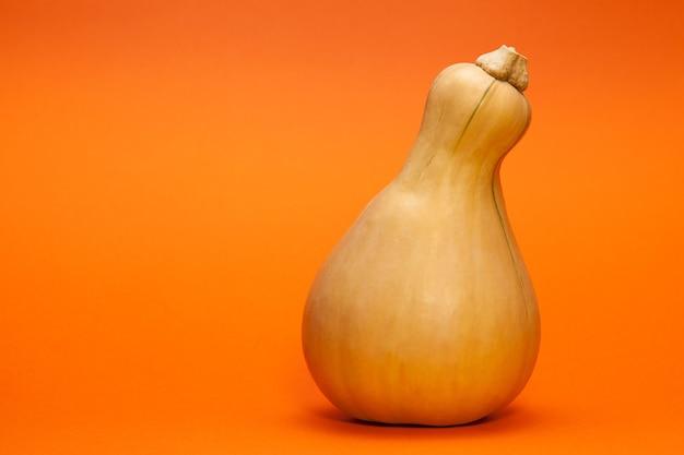 Una zucca a forma di pera o arancia
