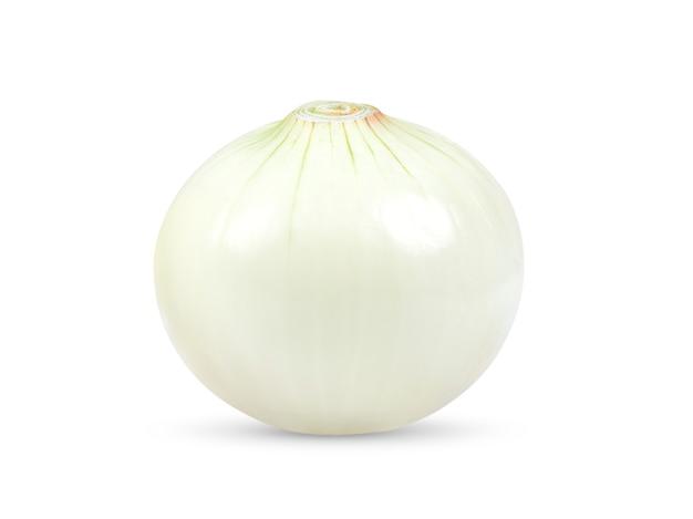 Cipolla isolata su bianco