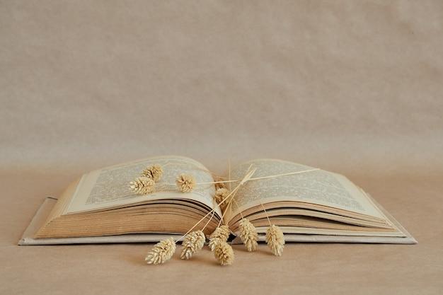 Libro aperto e spighe di grano asciutte su una pagina di carta