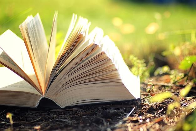 Libro aperto con fiore sull'erba