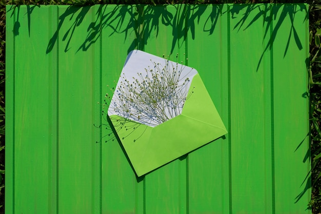 Apra la busta verde con i fiori selvaggi su un fondo di legno verde ciao dall'estate