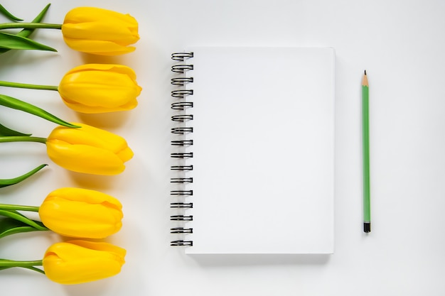 Apri blocco note, matita e tulipani gialli