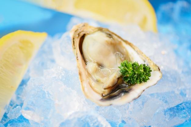 Apri guscio di ostrica con erbe spezie prezzemolo limone - frutti di mare ostriche fresche su ghiaccio
