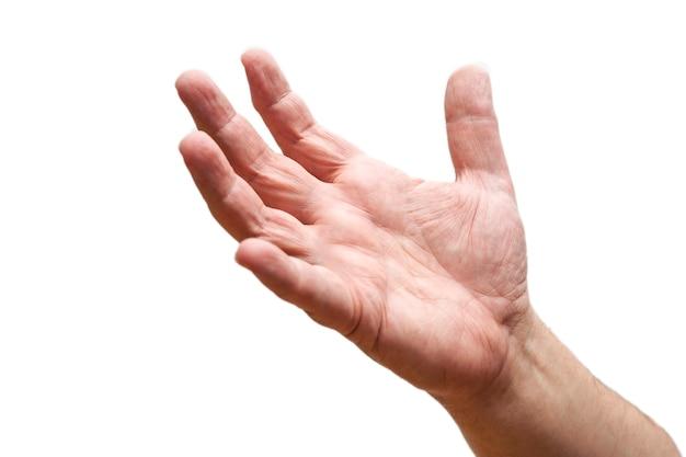 Aprire la mano destra in attesa di ricevere l'oggetto dall'alto. sfondo bianco