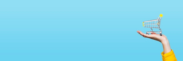 Canestro di opping in mani femminili su un blu. banner. concetto di acquisto, shopping, shopping online