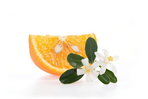 Arancio e fiore impostato su sfondo bianco