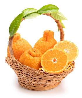 Frutta arancione con fette d'arancia e foglie nel cestello, mandarino dekopon arancia o sumo mandarino con foglie isolato su sfondo bianco.