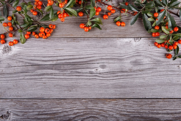 Bacche di pyracantha arancioni sul vecchio bordo o tavola di struttura di legno
