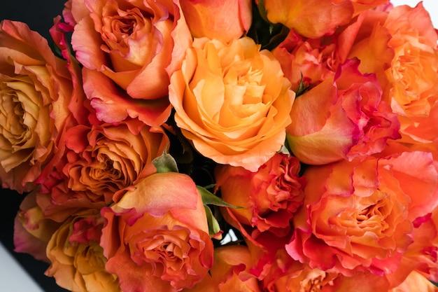 Mix di sfondo di rose arancioni. regalo romantico. simbolo di affetto. mazzo di fiori freschi