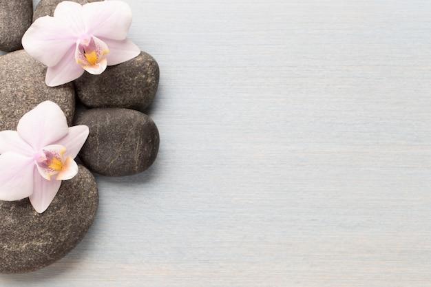 Fiore dell'orchidea sulla superficie in legno con pietre spa.