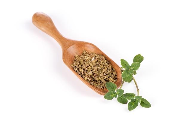 Origano ramo foglie verdi e foglie secche isolati su sfondo bianco.