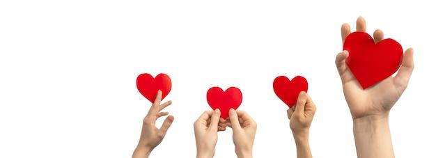 Donazione di organi, concetto di beneficenza per bambini. banner, mano con cuore rosso isolato su sfondo bianco. copia spazio foto