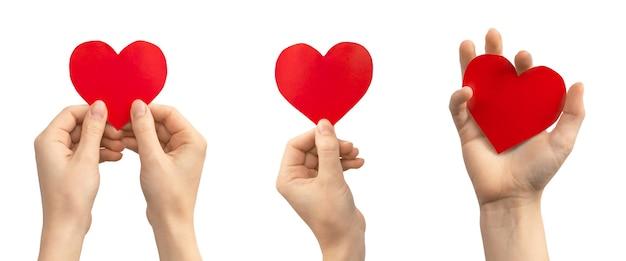 Concetto di donazione di organi. banner, mano con cuore rosso isolato su sfondo bianco. copia spazio foto