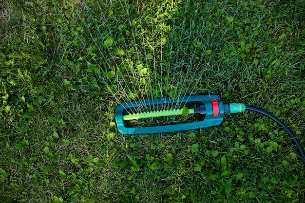 Irrigatore da giardino oscillante che spruzza acqua sull'erba verde nel cortile di casa, in estate o in primavera
