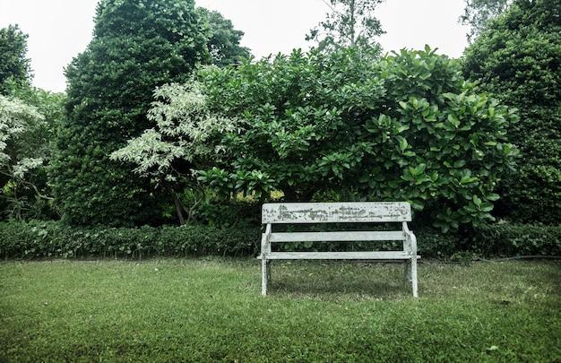 Giardino inglese all'aperto nel parco pubblico