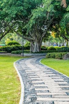 Vista sulla strada della strada in pietra del parco all'aperto