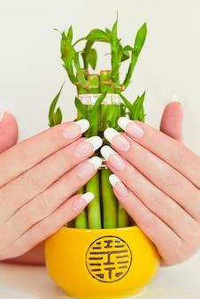 Manicure francese lungo ovale sulla mano femminile con il primo piano di bambù