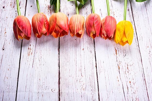Scatto dall'alto un mazzo di tulipani arancioni e gialli su un tavolo in legno rustico. stile piatto vista dall'alto. accettare il concetto di doni