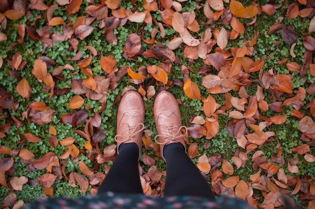 Inquadratura dall'alto di una donna in piedi su foglie d'autunno