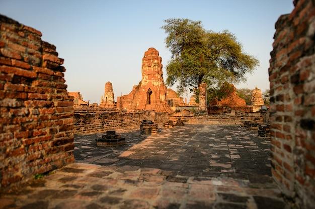 Panoramica dei templi di ayutthaya in tailandia. rovine di antichi muri di mattoni, vecchia pagoda.