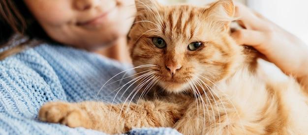 Proprietario che accarezza adorabile gatto