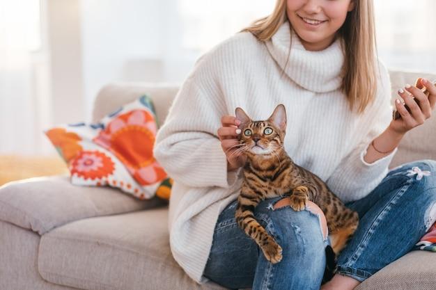 I proprietari amano e tenerezza a un gatto. bellissimo gattino del bengala si siede sulle ginocchia della donna. ragazza che graffia l'orecchio di animali domestici
