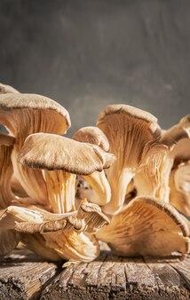 La raccolta dei funghi ostrica si trova su un vecchio tavolo di legno