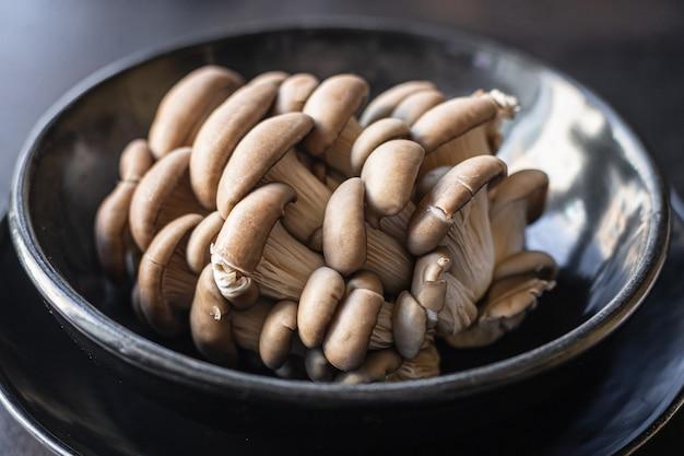 Funghi ostrica funghi freschi crudi tendenza pasto spuntino