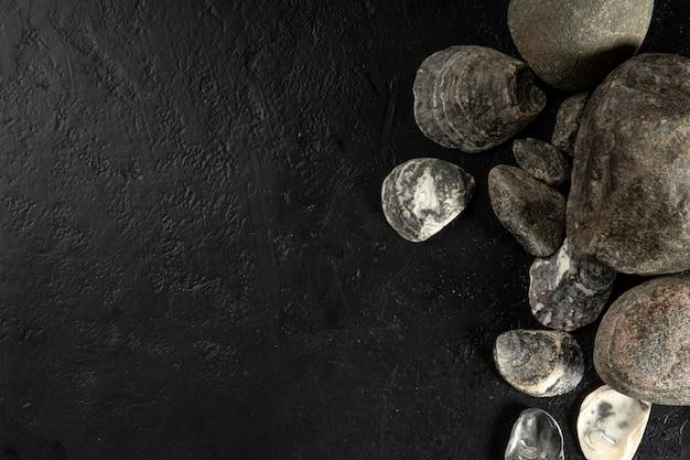 Gusci di ostriche e pietre su uno sfondo nero.