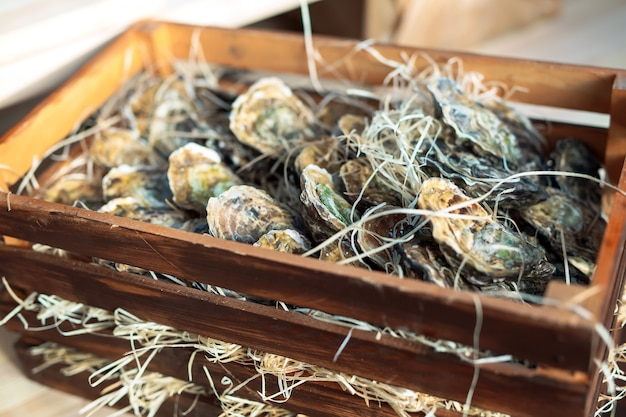 Ostriche in una scatola di legno.