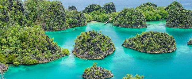 Isola di painemo in giornata di sole. laguna blu, raja ampat, papua occidentale, in indonesia