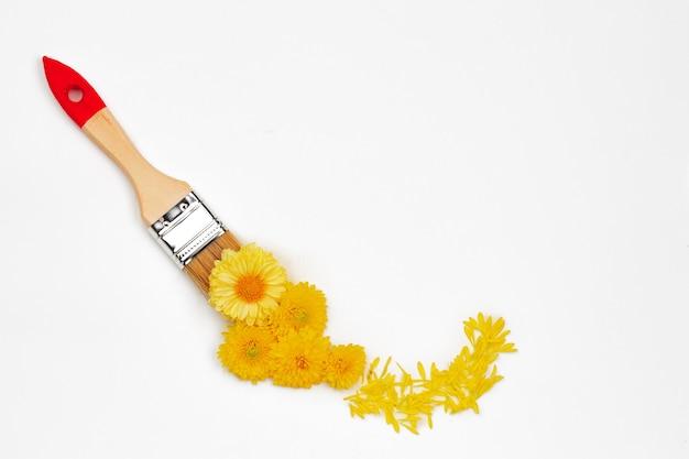 Pennello e boccioli di fiori su sfondo bianco