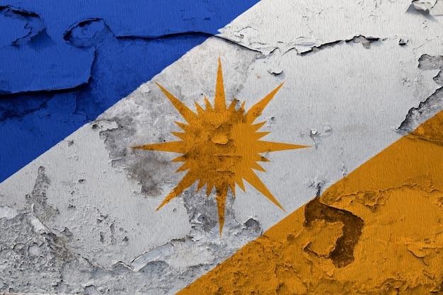 Bandiera nazionale dipinta di bandeira do tocantins su un muro di cemento