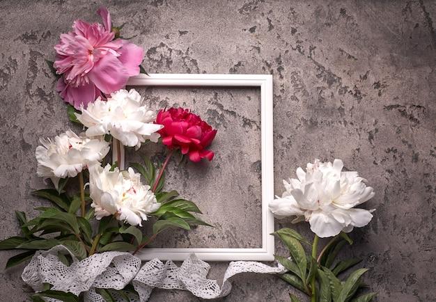 Paionies fiori isolati e cornice bianca su sfondo grigio.
