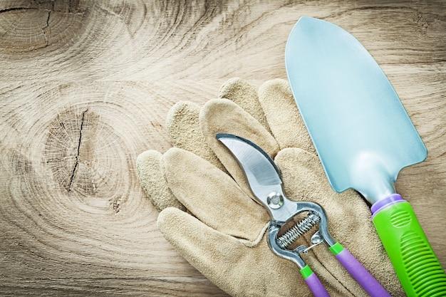 Coppia di guanti da lavoro cesoie pala sul concetto di agricoltura tavola di legno