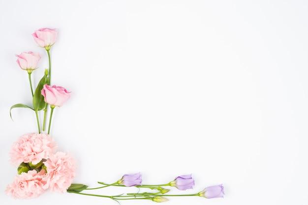 Angolo di incorniciatura di fiori pallidi