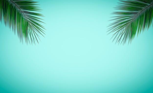 Sfondo di foglie di palma. foglie di palma tropicali su uno sfondo colorato vuoto