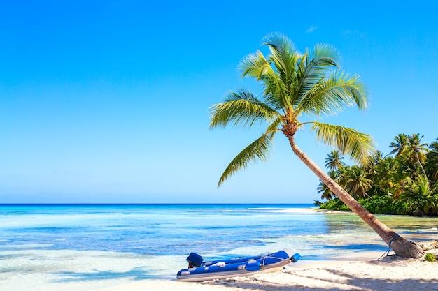 Palma sulla spiaggia tropicale caraibica con il gommone. isola di saona, repubblica dominicana. fondo di viaggio di vacanza.