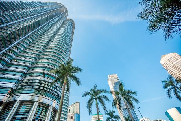 Palme su una superficie di grattacieli