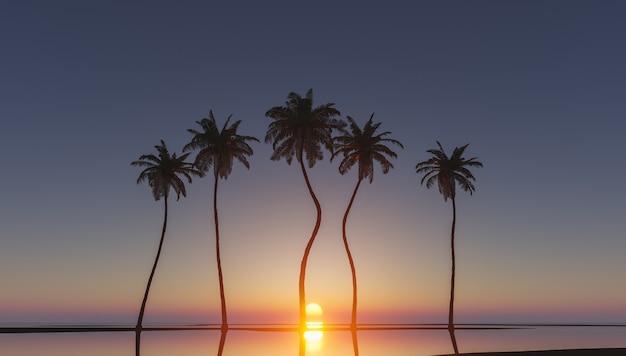 Palme nel tramonto tropicale