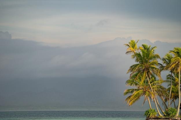 Palme con acqua di mare e montagne sullo sfondo copia spazio vacanza e concetto di viaggio