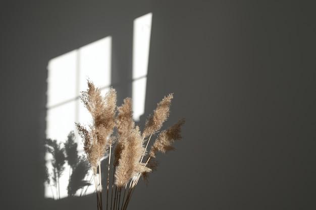 Erba di pampa con colori neutri pennacchio di canna stelo erba di pampa essiccata fiore decorativo di piume