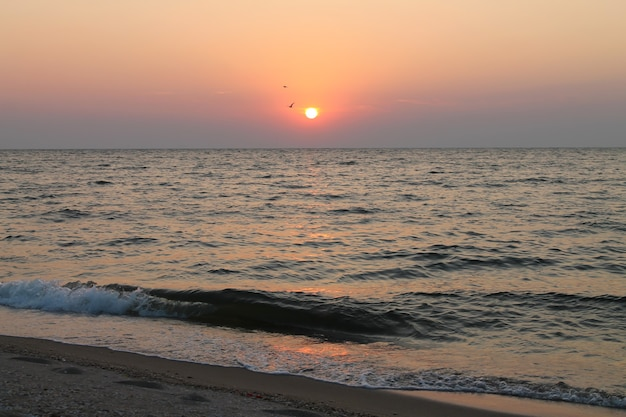 Panorama di bellissima alba sul mare e natura selvaggia