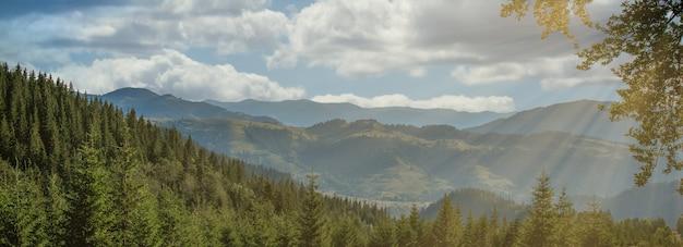 Panorama delle montagne carpatiche in giornata di sole estivo