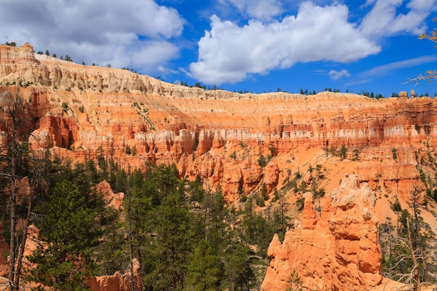 Panorama dal parco nazionale di bryce canyon, usa.