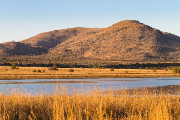 Panorama dal parco nazionale di pilanesberg, sud africa. erba secca al crepuscolo. safari in africa