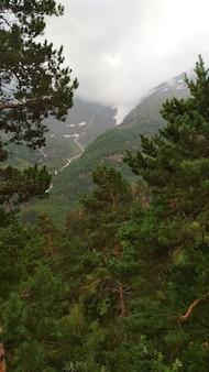 Panorama delle verdi montagne caucasiche