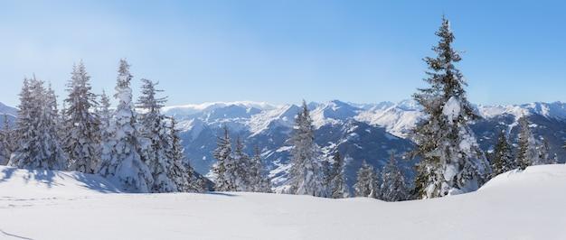 Panorama del paesaggio invernale con alberi di neve e montagne invernali, montagne delle alpi, austria