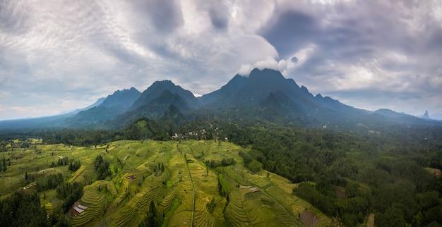 Veduta aerea panoramica della mattina sulle terrazze di riso con un bel cielo sopra le risaie di bengkulu, indonesia