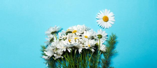 Vista panoramica banner del bouquet di fiori di camomilla sfondo.